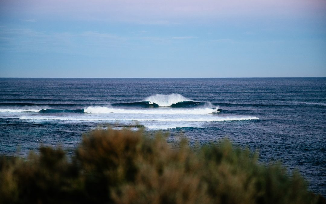 Hardy, Willcox, and Cox Earn Wildcard Entry to Boost Mobile Margaret River Pro