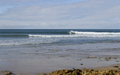 Victorian Longboard State Champions to be crowned this weekend at Point Impossible