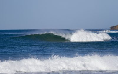 Surfing Victoria Board Member Expression of Interest