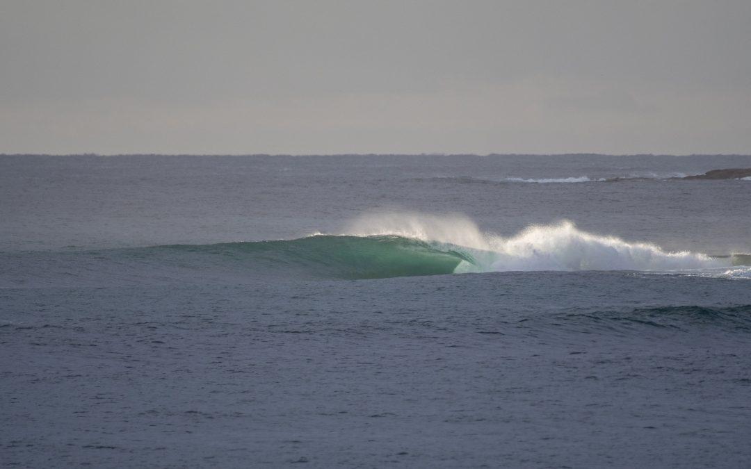 SURFING NSW UNVEILS 2021 EVENT CALENDAR