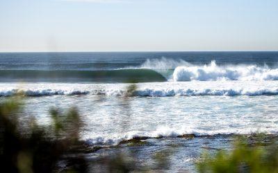 SURFING NSW 2021 EVENT UPDATE