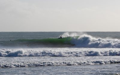 SURFING NSW SEPTEMBER EVENTS UPDATE