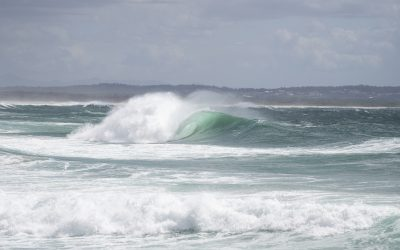 SURFING NSW COVID POSITION STATEMENT – FRIDAY 27, AUGUST 2021